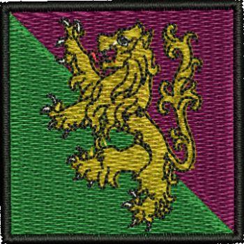 51st Infantry Flash
